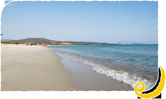 Altre foto sardegna mare verde for Agrustos mare